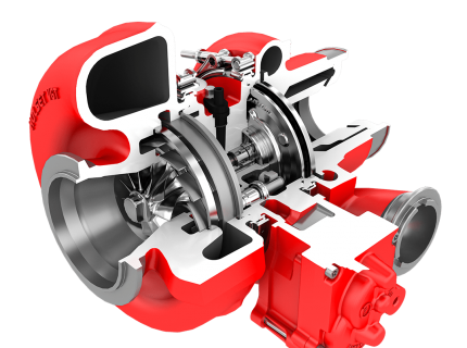 3D Cutaway Rendering